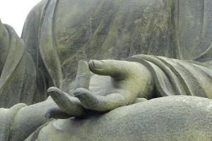 Sri Lanka - Udawalawe Meditation - Midoro